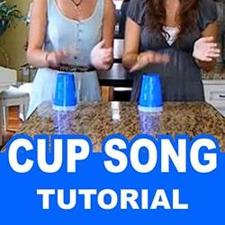 Cup Song Fazer Tutorial Português